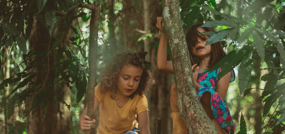 """""""Toda educação é auto-educação (...). Devemos criar o mais propício ambiente para que a criança eduque-se junto a nós, da maneira como ela precisa educar-se por meio de seu destino interior"""" Rudolf Steiner"""